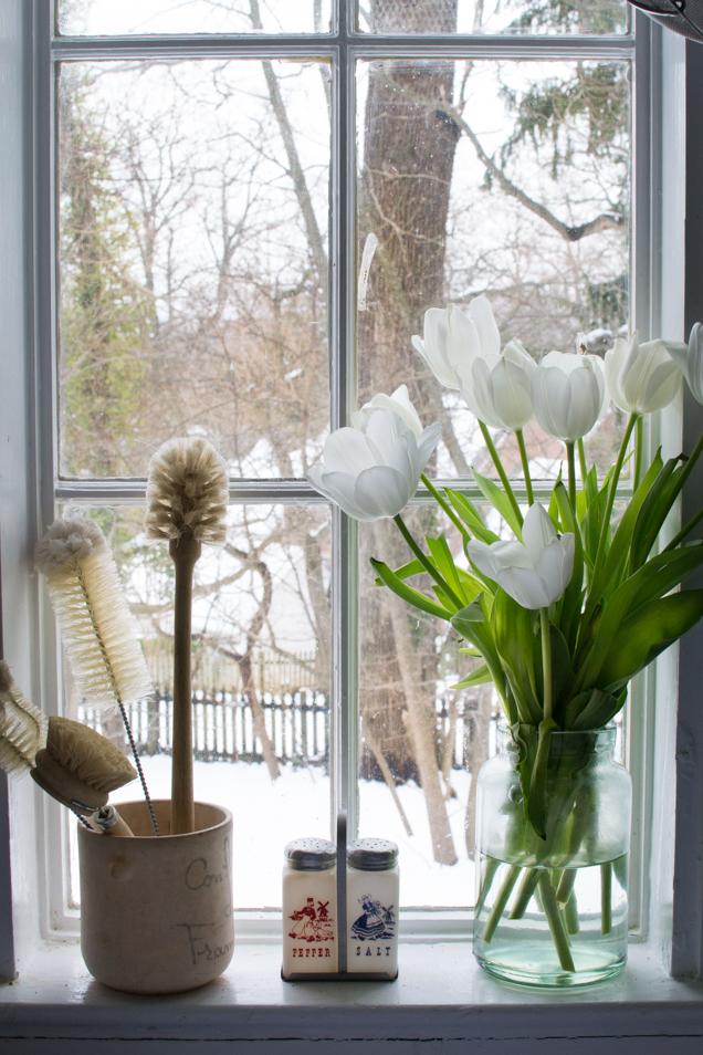 tulpen sneeuw-0011
