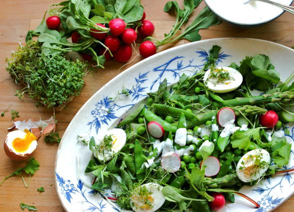 Veldkeuken salade-246