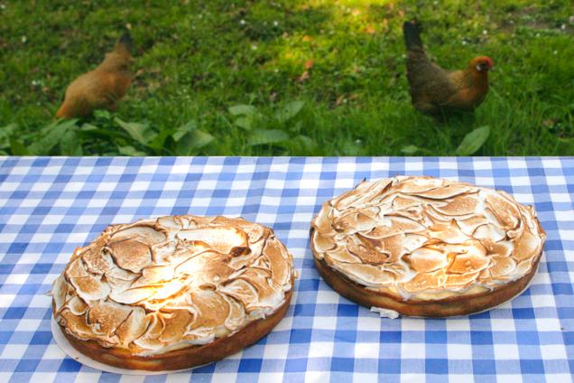 Veldkeuken taarten -6921