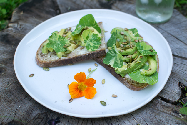 sandwich met avocado2-0293
