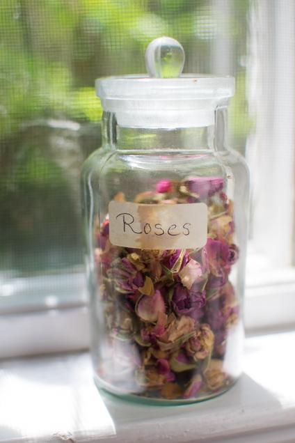 rozen-1383