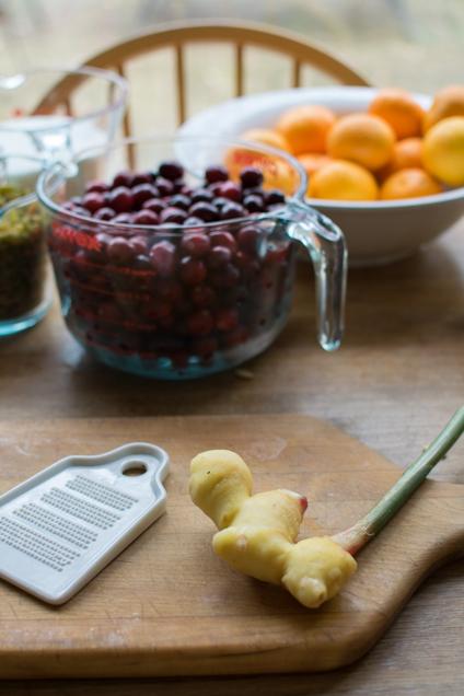 Cranberry chutney ginger-3776