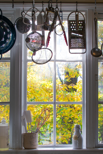window view fall-2951-2