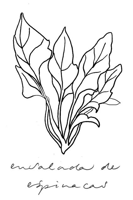 illustratie ensalada de espinacas