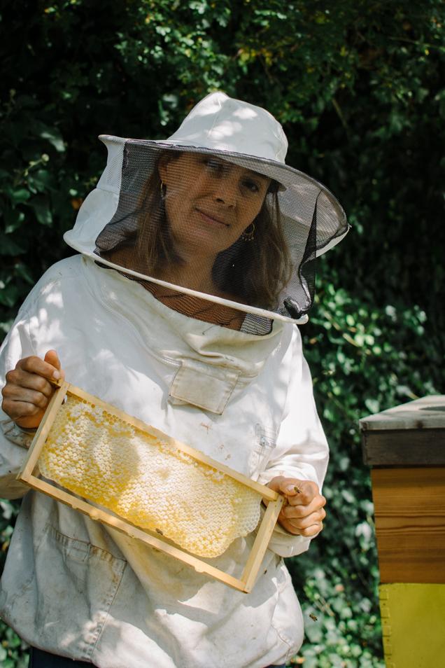 haagse honing 1-6504