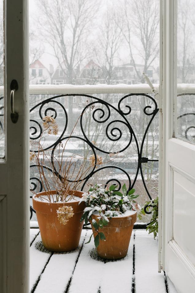 zuurkool winter 2-9651